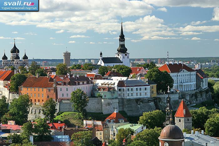 купить квартиру, продажа квартир, таллин, офис.  Рынок недвижимости Эстонии.  Время покупать?