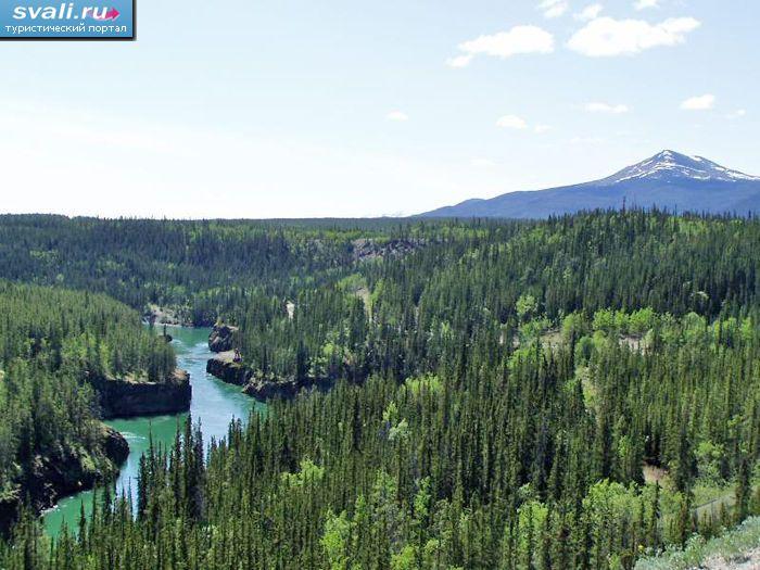 Река юкон провинция юкон канада